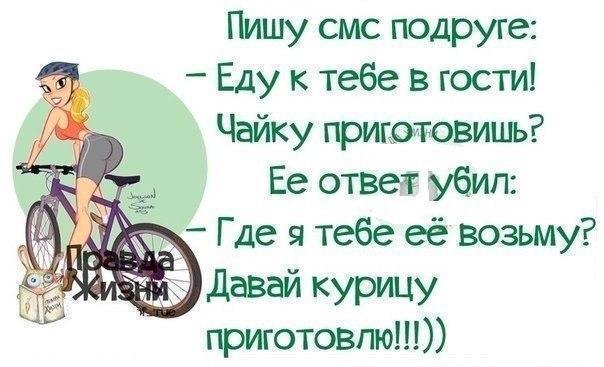 MZ81M_yOTm4.jpg