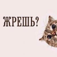 Dyusebaevkz